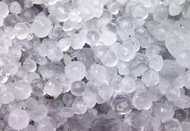 Hail Damage to Shingles in Florissant Missouri